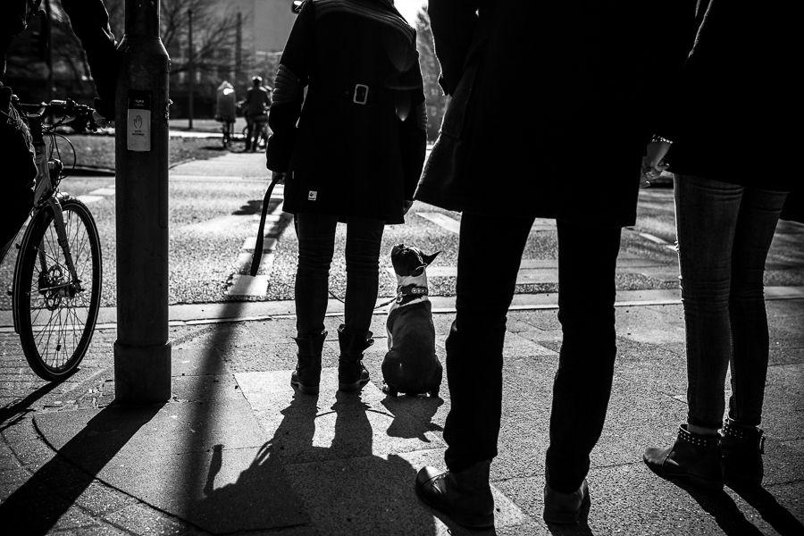 Blanco y negro, Boda en España, Boda en Sevilla, bodas, bodas diferentes, bowtie, Carmomna. Rafael Torres Fotografo, Carmona, Fotografía Boda Andalucia, Fotografia Boda en Sevilla, Fotografo Bodas España, Fotografo de Boda, fotografo en carmona, Fotogr