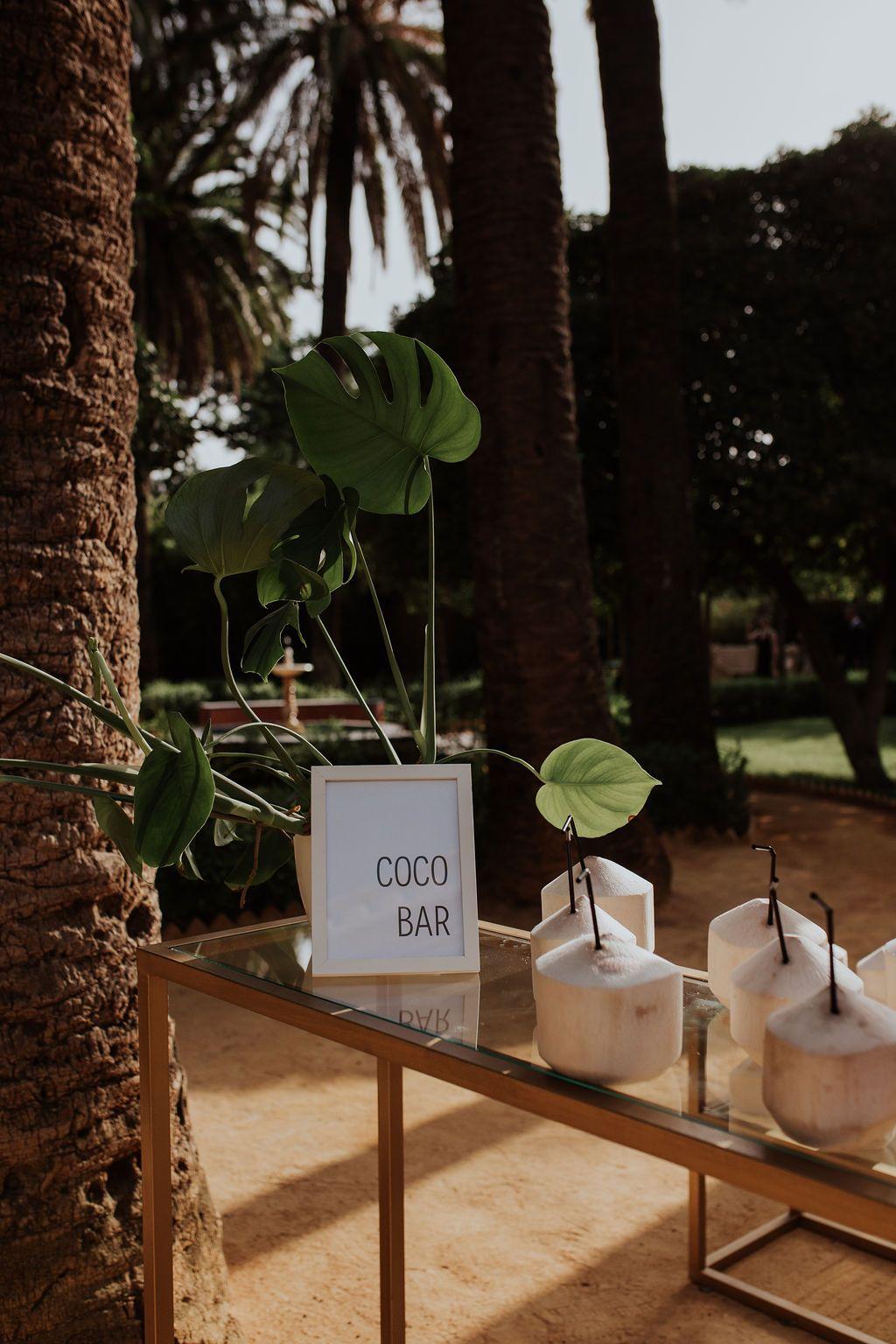 Coco bar en Villa Luisa